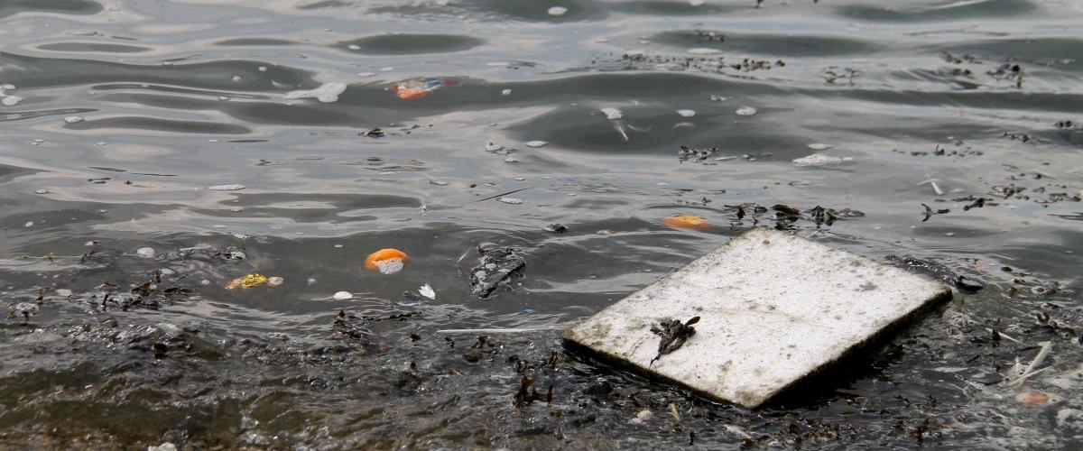 Waterkwaliteit | © VLIZ, Leontien De Wulf