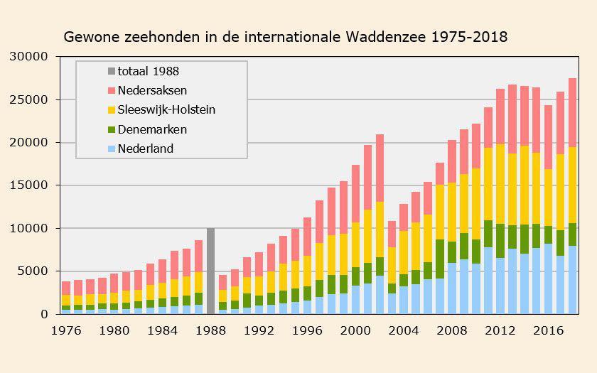 Aantallen gewone zeehonden  in de internationale Waddenzee (1975-2018) | © Ecomare