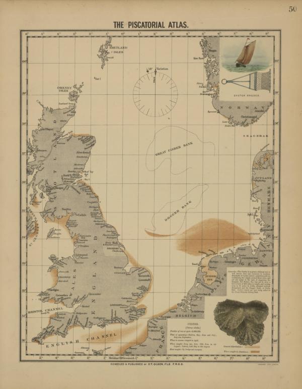 Verspreiding van platte oesters in de Noordzee in 1883 | © Olsen, Wetenschappen