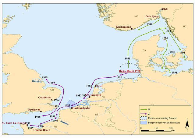 Introductie van de Amerikaanse zwaardschede in Europa | © VLIZ (naar Severijns, 2002)