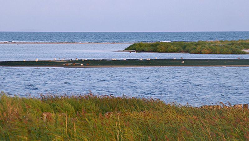 Oostzee, Zuid-Zweden | © Ecomare, foto fitis, sytske dijksen