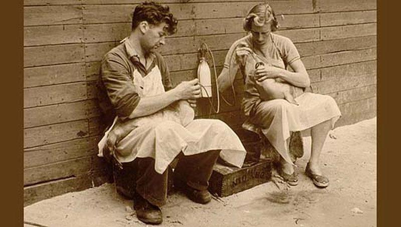 Echtpaar De Haan (eind jaren 50)   © Ecomare