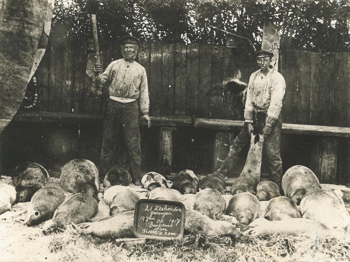 Zeehondenjagers   © archief Ecomare