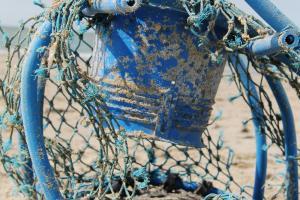 Aangespoelde visfuiken | © VLIZ, Leontien De Wulf