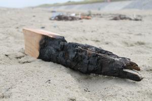 Verbrand hout | © VLIZ, Leontien De Wulf